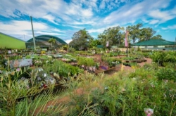 Position available: Retail Nurseryperson, Horticulturalist, Bayside & Eastern Suburbs QLD