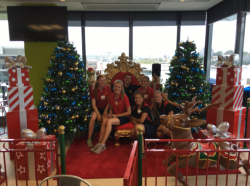 Position available: Christmas Decorator, Sydney NSW